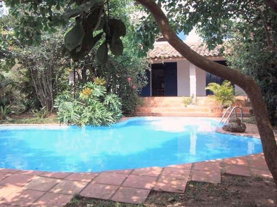 Private pool. Piscina particular.