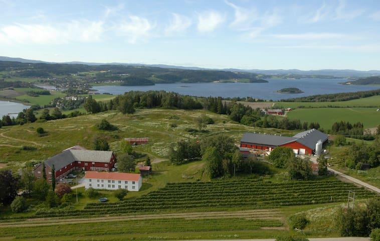 Leilighet på Hø Gård, Inderøy. Fjordutsikt.