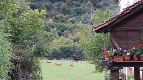 Casa Rural con encanto en Picos de Europa.