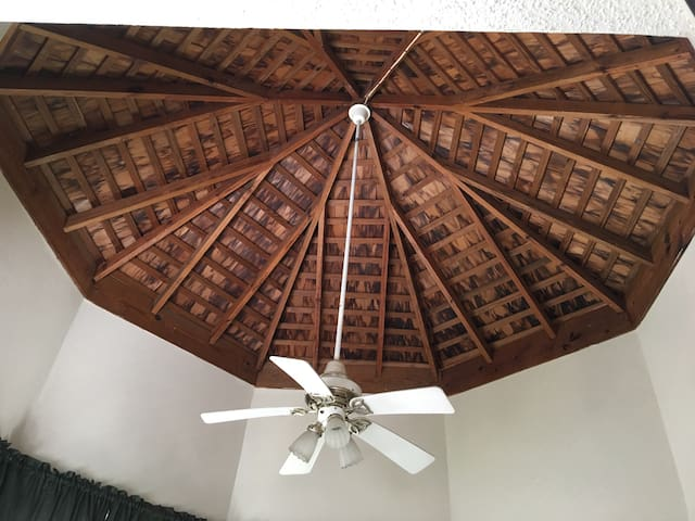 Vaulted Ceiling in master bedroom