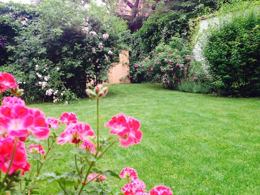Appart bxl rez de chauss e arri re grand jardin for Brico jardin bruxelles