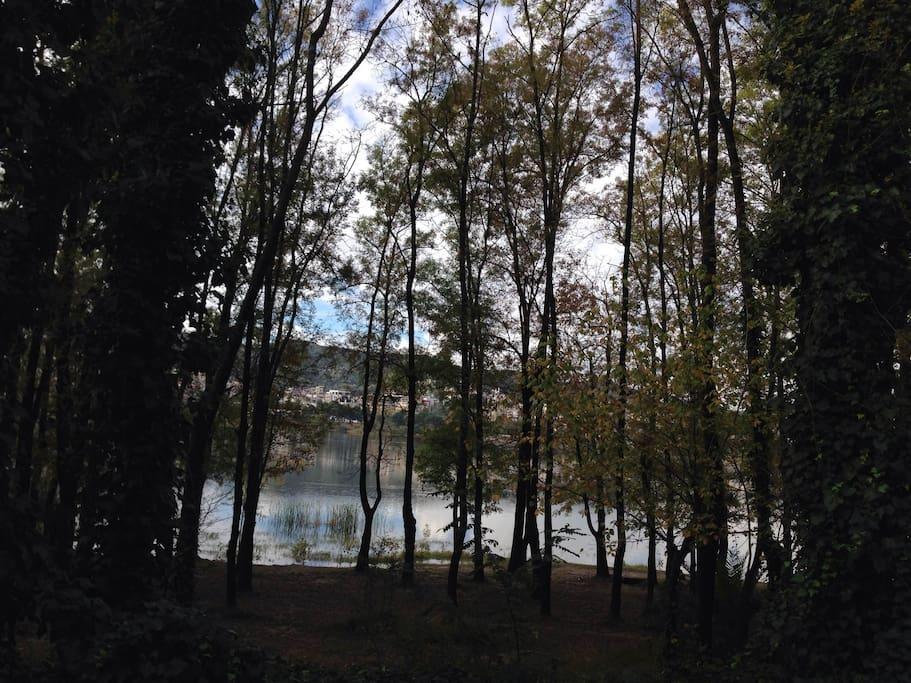Vicino al lago articifiale di Tirana