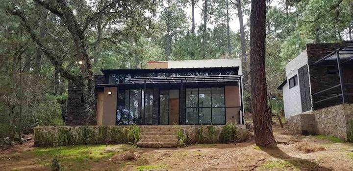 cabaña bosque viejo 3