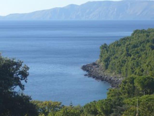 Maratea, Appartamento con piscina, 800m dal mare