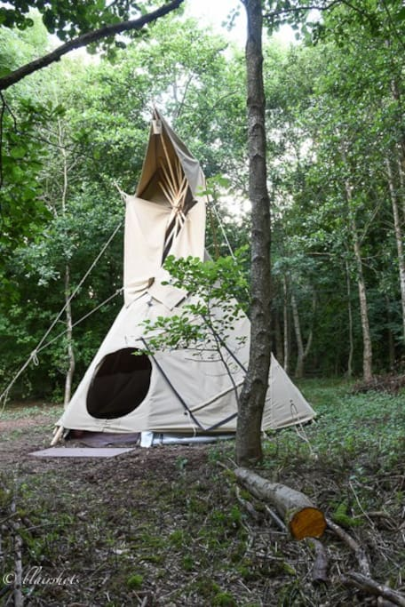 ....with a hand-crafted tipi to call home....