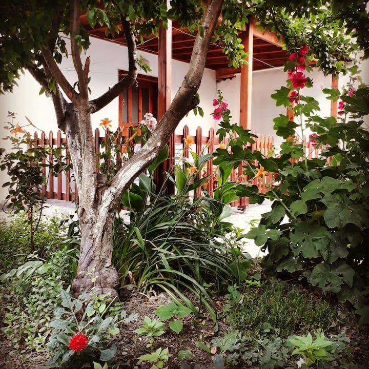 1+1 müstakil. Yeşilin içinde sakin bir ev.