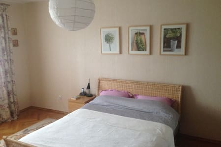 Cozy room in large apartment on the Trade side - Velikiy Novgorod