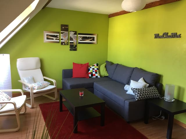 Attic apartment city center Haguenau - Haguenau - Apartemen