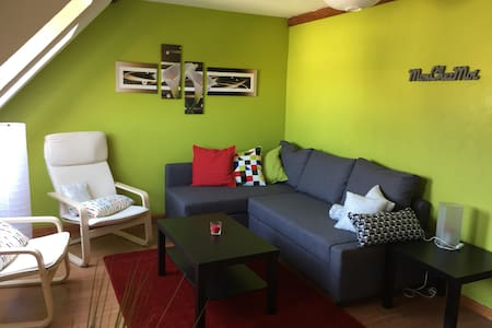Attic apartment city center Haguenau - Haguenau - Appartement