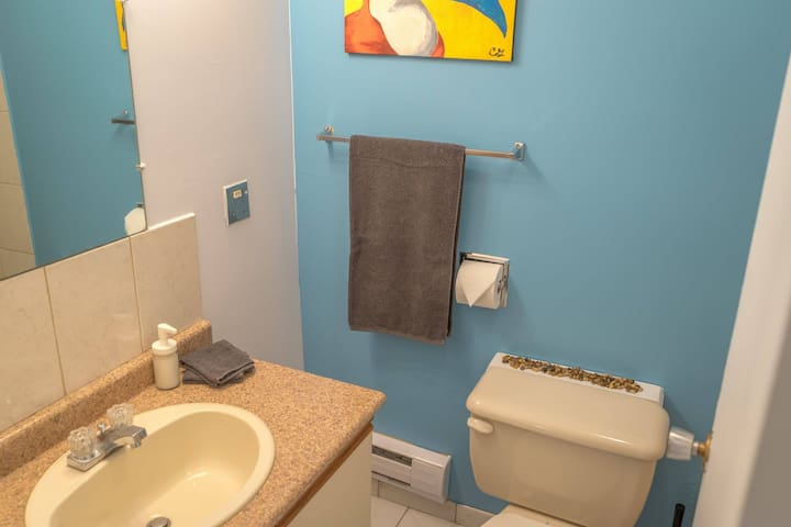 A simple bathroom with everything you might need from a hair blower to shampoo/ conditioners