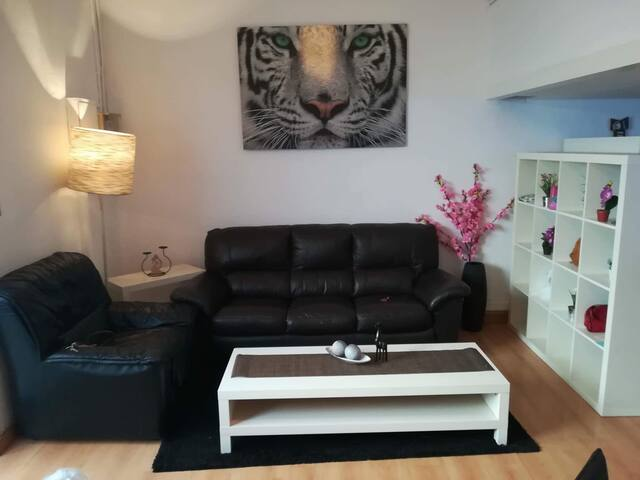 Cozy loft duplex  in Barcelona