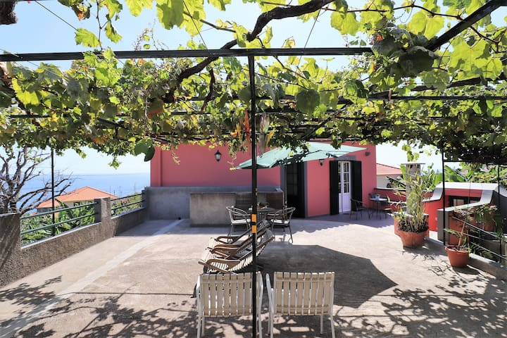 Chalet Figueira - Vineyards & Banana trees