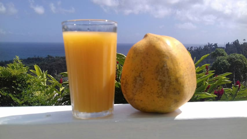 Fresh  orange juice and fruits for breakfast.