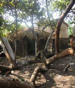 Hidden Hut -  inside a tree - Kunyhó