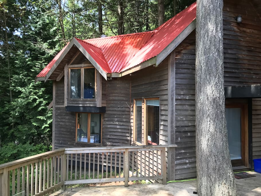 The cabin in the woods. Sleep with the trees.