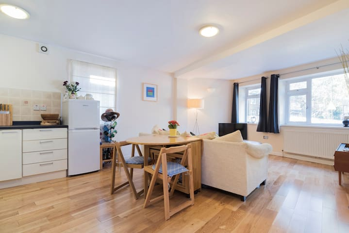 1bd flat - Zone 2 with roof terrace - London