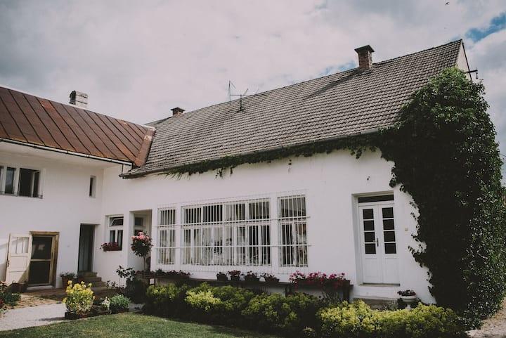 Vidiecky dom - zelenýdeň