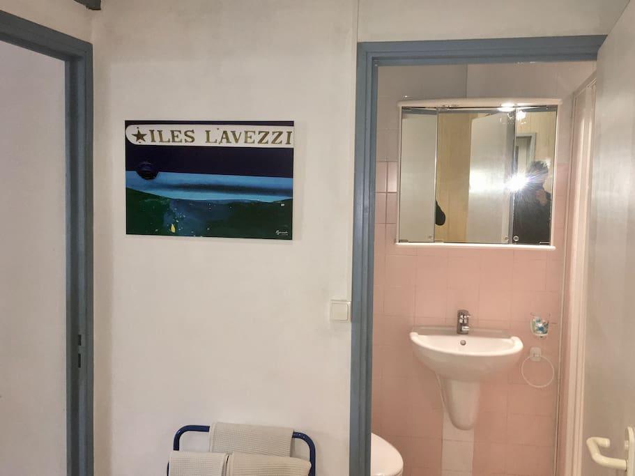 Salle de bain avec WC lavabo douche