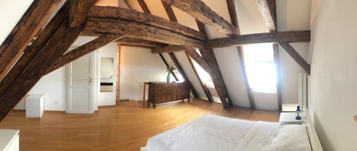 Schöne Maisonette-Dachwohnung in der Altstadt