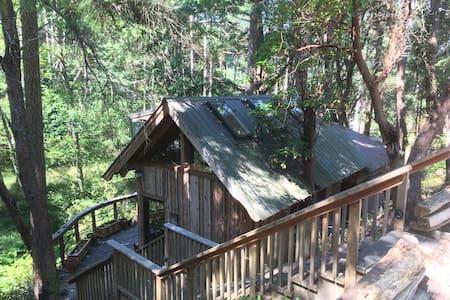 Frog Hollow — A unique artist's cottage.
