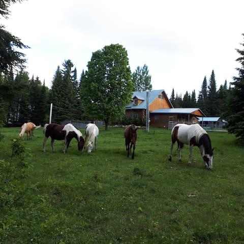 Ranch en bois rond Rustique