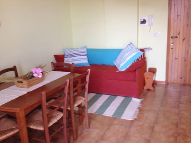 Cucina salotto- divano letto
