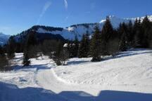 Studio 4 pers - station de ski Praz de Lys