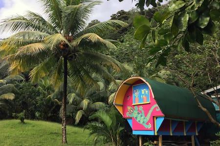 Creole 'Gypsy Caravan' in the rainforest. - Rosalie
