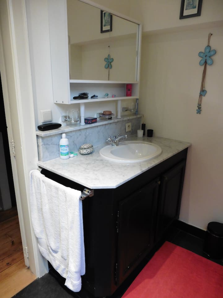 De badkamer, de lavabo