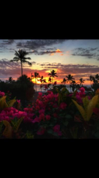 Amazing sunsets all year round!