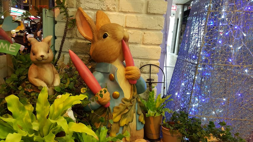 Peter Rabbit's Home-Double Room Shared Bathroom A1 - Wanhua District - Apartment