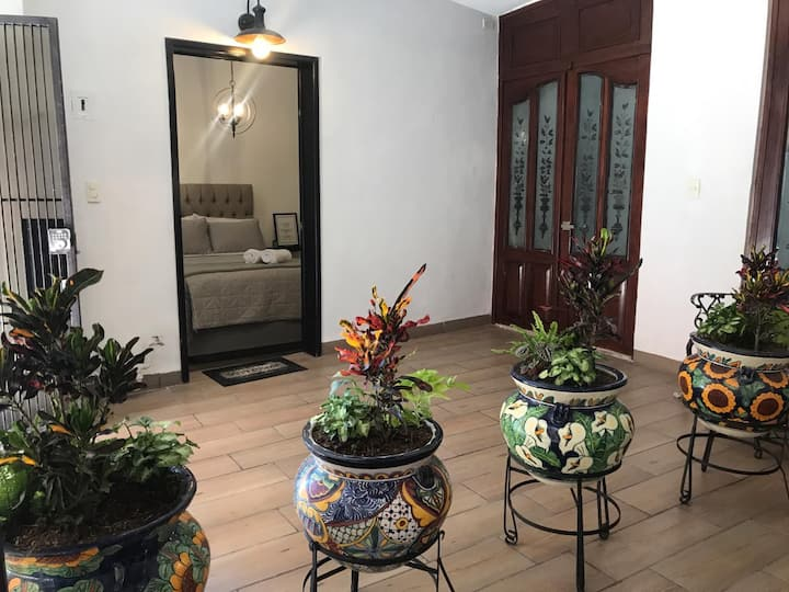 Suite Lavanda Downtown Houses For Rent In Aguascalientes Aguascalientes Mexico