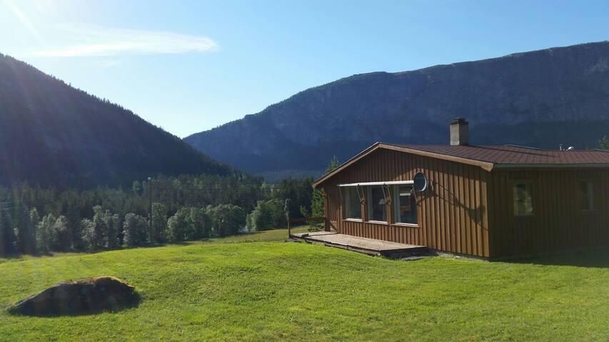 253. Koselig liten hytte i Valle i Setedalen