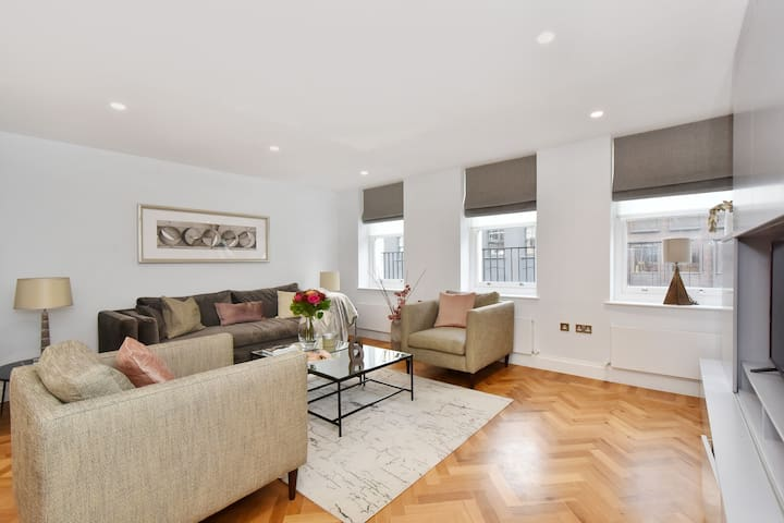 Graceful Apartment in London