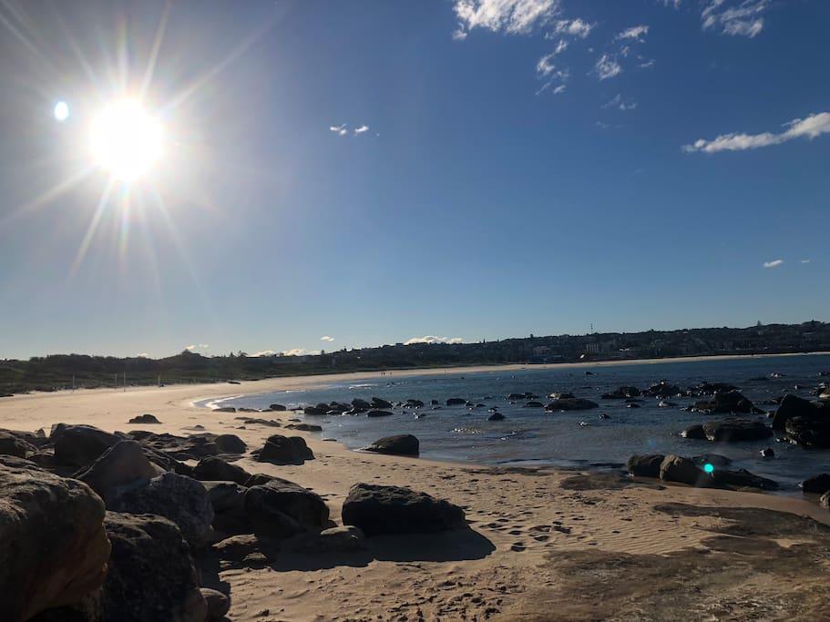 Our beautiful Maroubra beach.
