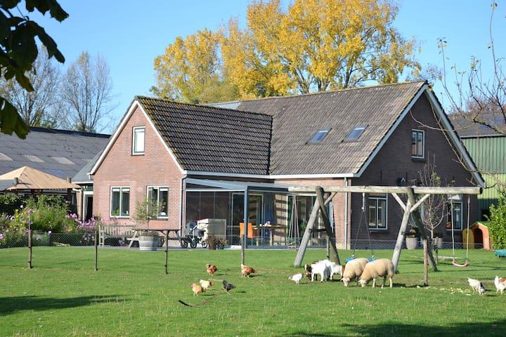 Luxe vrijstaande woonboederij, centraal gelegen - Odijk - Villa