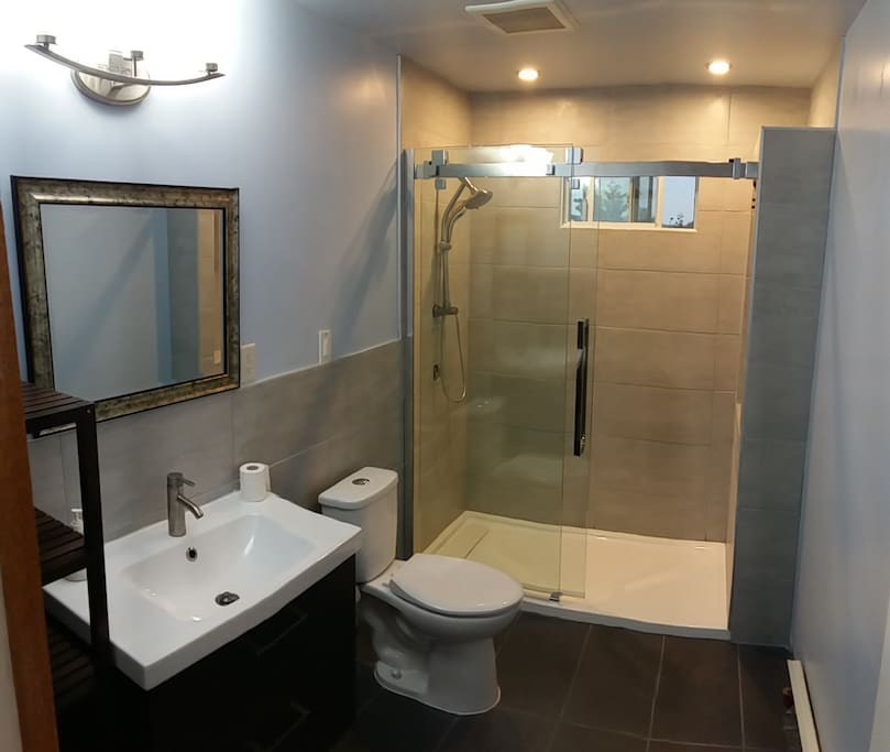New fully renovated washroom