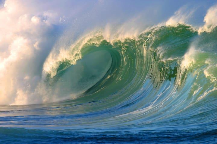 Stunning *BEACHFRONT*Condo with FULL Ocean Views!
