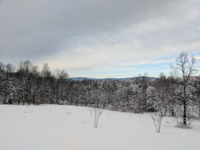 Winter view of the back pasture