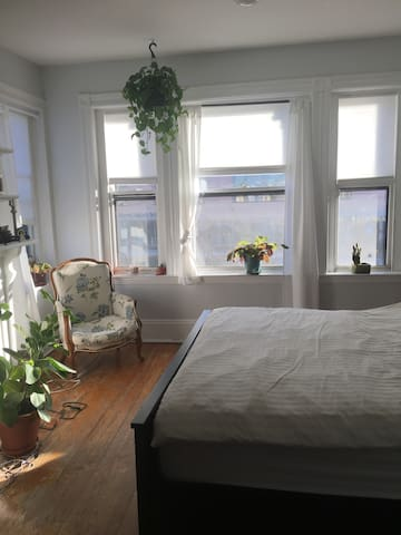Light-filled apartment right near Inman Square