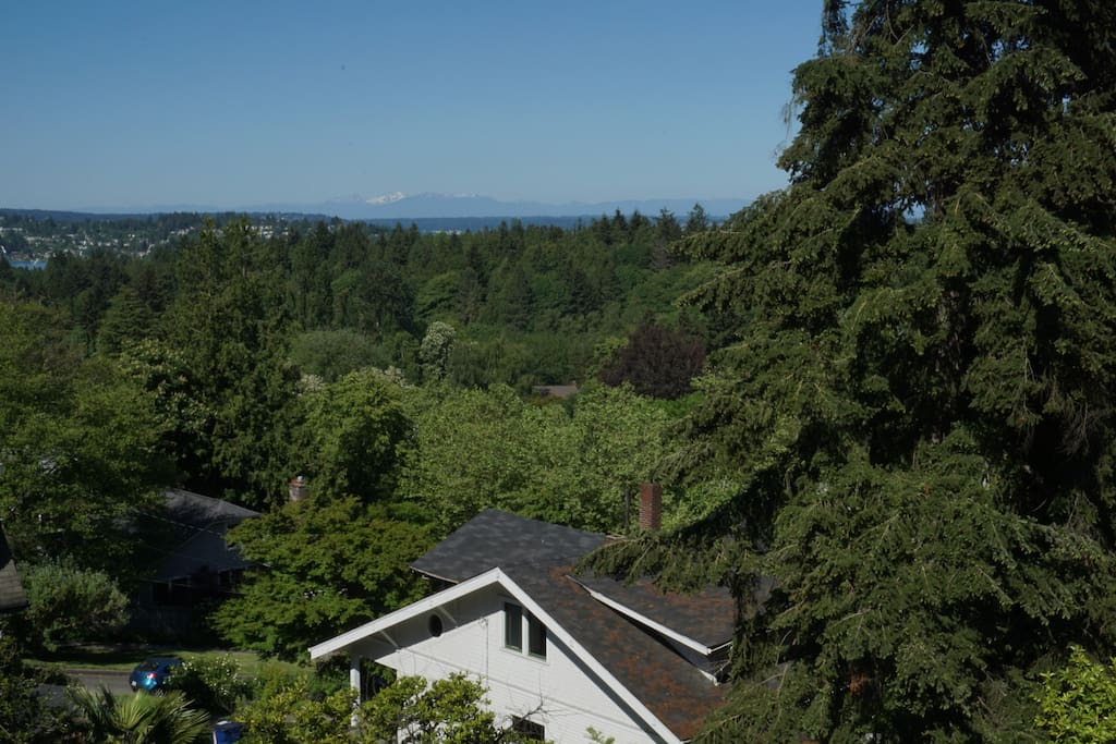 View of Northern Cascades from the balcony.  Eastern view is just as clear and unobstructed!