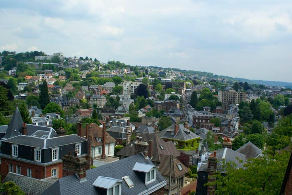 magnifique vue sur Rouen