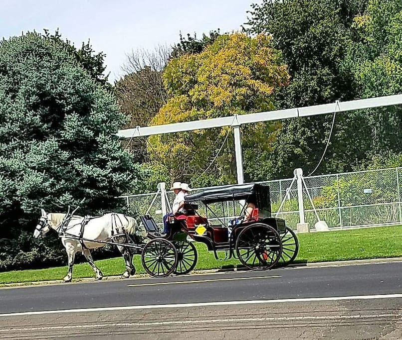 Consider a horse drawn carriage ride, normally available in down down Walla Walla.