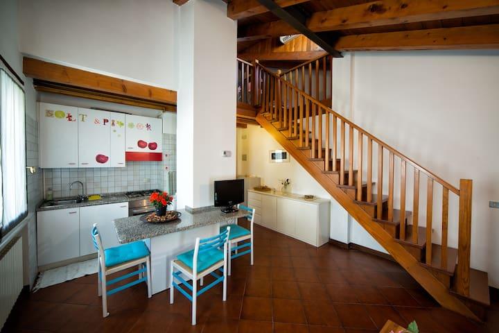 Suite Treviso centro near Venice