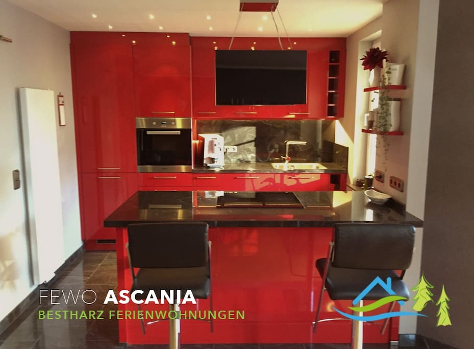 Ferienwohnung ascania apartments for rent in bad for Designelemente wohnung