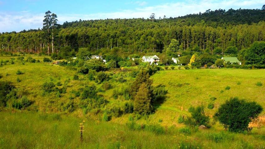 Cottage on the farm - Howick - Diğer