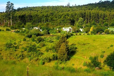 Cottage on the farm - Howick - Diğer