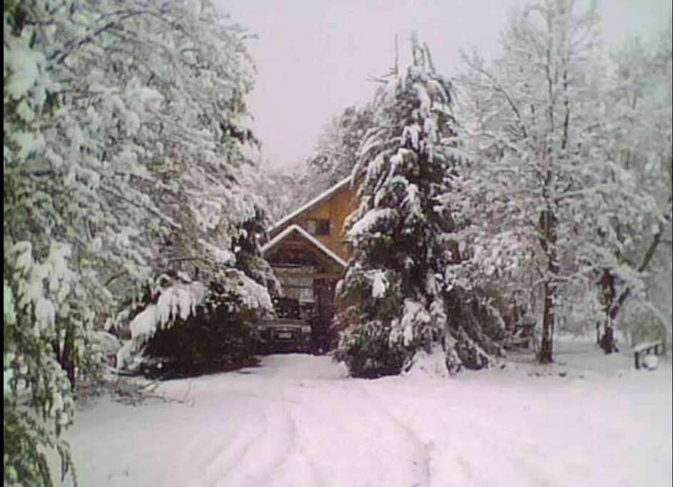 Cabaña ubicada en un sector de alta montaña, lugar privilegiado, tranquilidad absoluta, rodeado de flora y fauna autoctona de la Region. Muy proximo a centro de ski Termas de Chillan.
