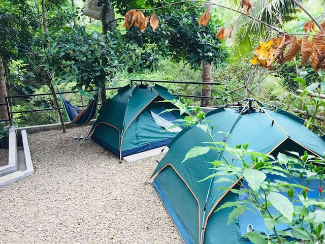 Zallags farm&glamping garden 3tents NatureFarmLife