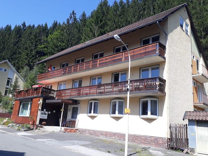 Sunny 1 bedroom apartment sleeps 3+1 with balcony